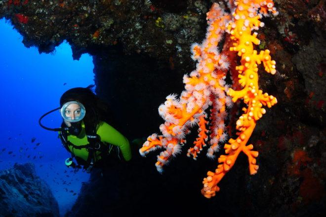 Todo listo para el comienzo del '9º Open Fotosub Lanzarote Mar de Lava'