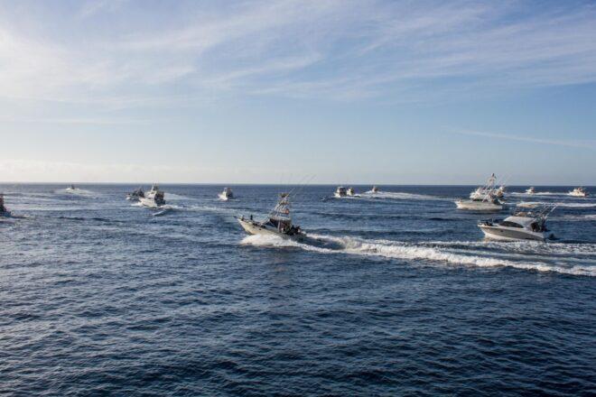 Concurso de Pesca de Altura de Puerto Calero: competición, deporte y sostenibilidad