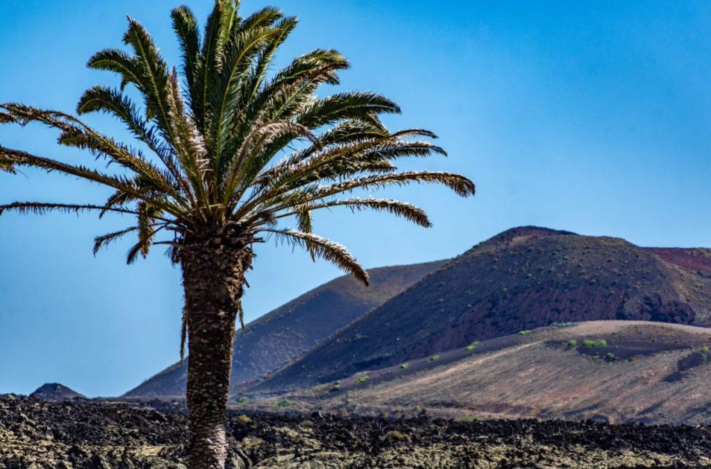 ESD- Post Senderismo 6 Turismo Lanzarote