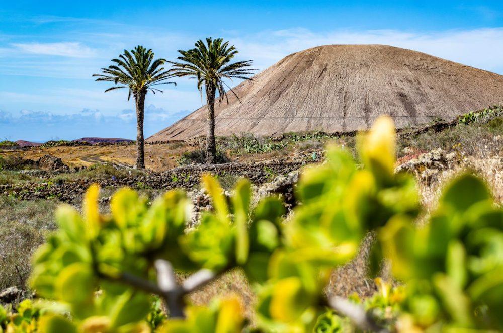 ESD - Post Senderismo Turismo Lanzarote 1